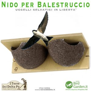 nido per balestruccio - birdgarden.it