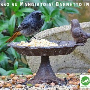 bagnetto mangiatoia ghisa 146 - www.birdgarden.it